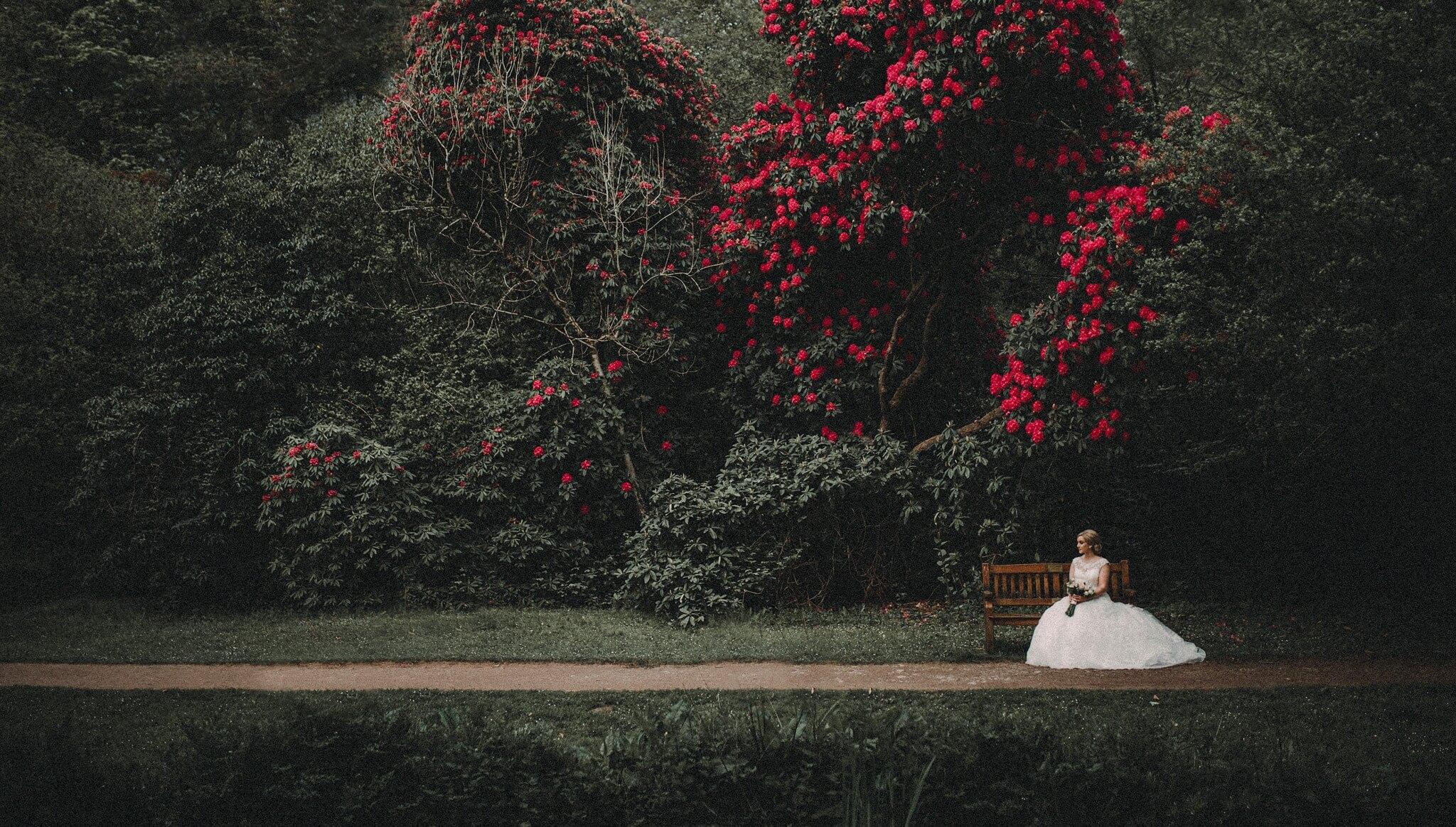 wedding-photographer-and-videographer-bryngarw-house-brynmenyn-bridgend-uk-02