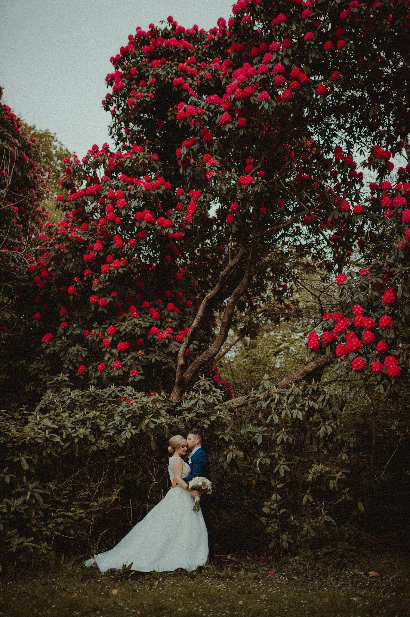 wedding-photographer-and-videographer-bryngarw-house-brynmenyn-bridgend-uk-05