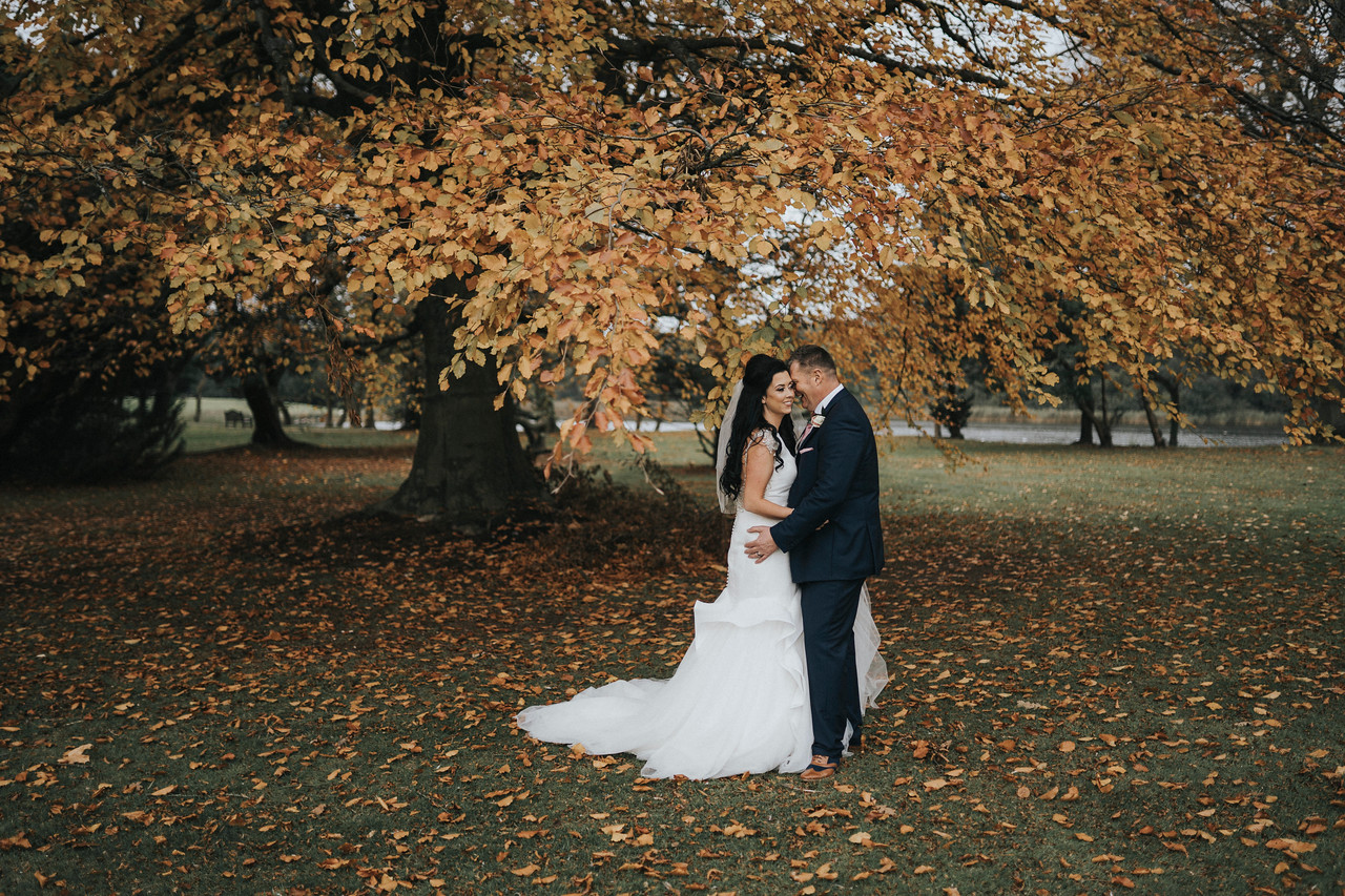 couple together under a tree