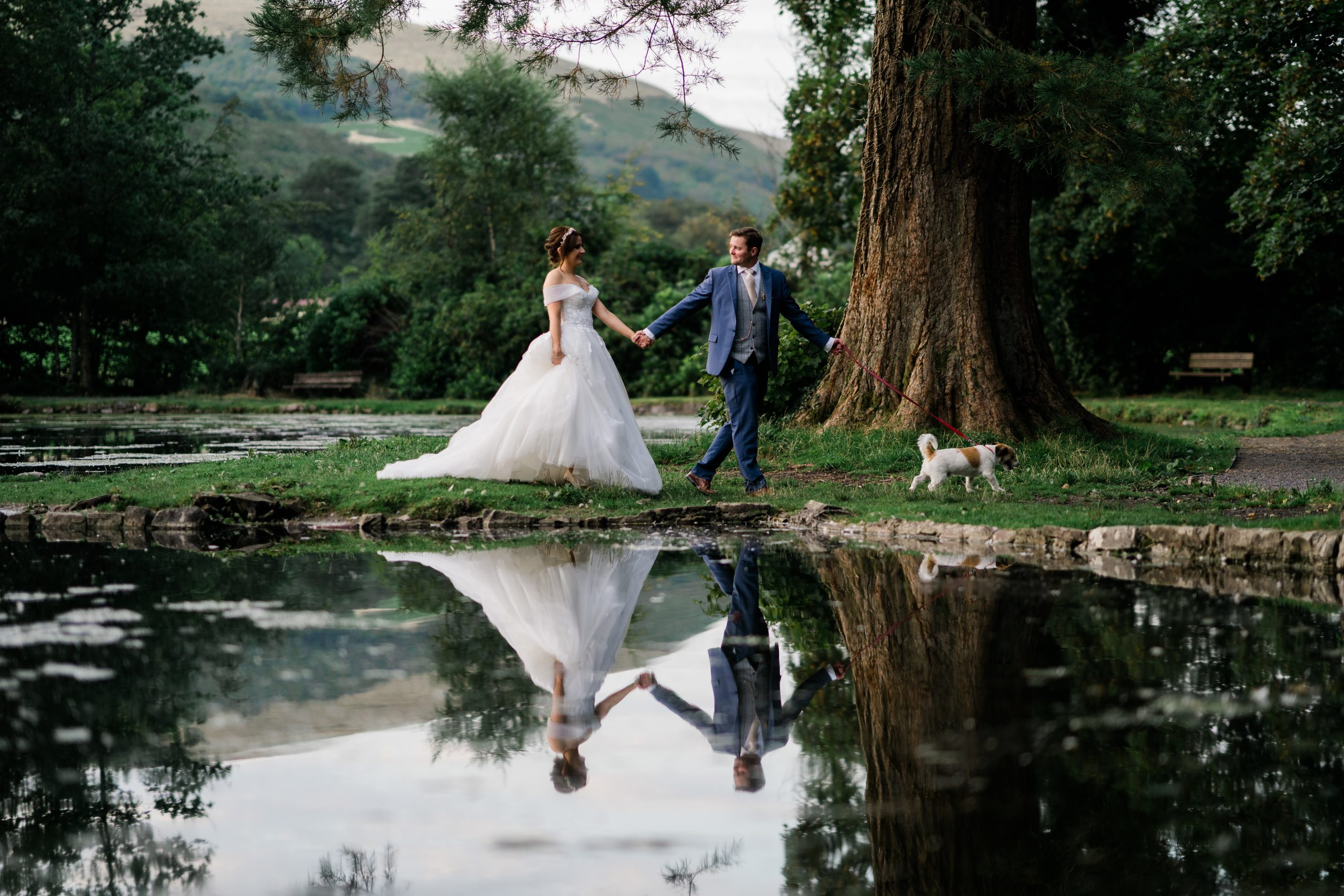 Bride and groom walk across the landscape of their venue with their dog
