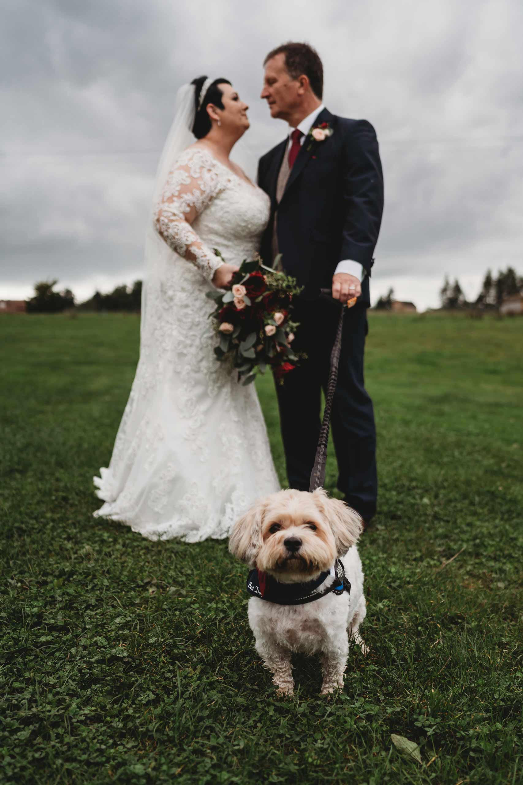 Bride, groom and their dog surronded by the beauty of the outdoors
