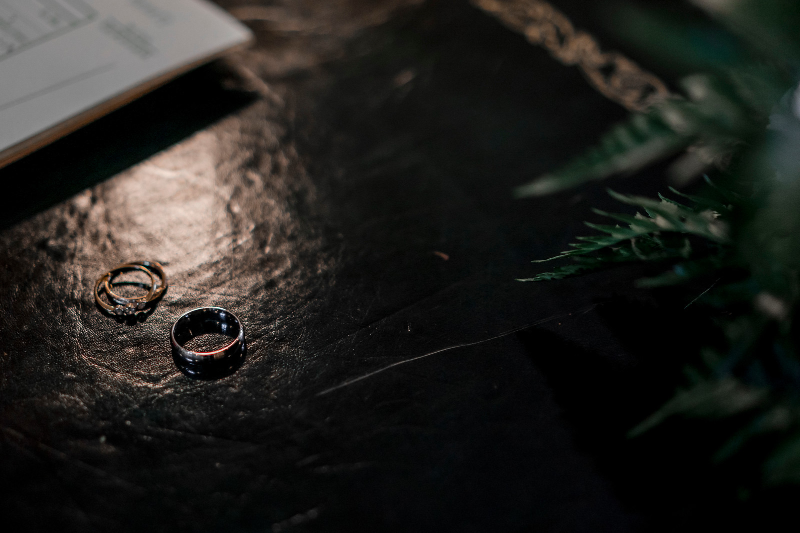 Unique photo of the bride and grooms wedding rings
